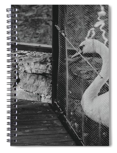 Jail Spiral Notebook