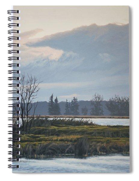 January Skies Spiral Notebook