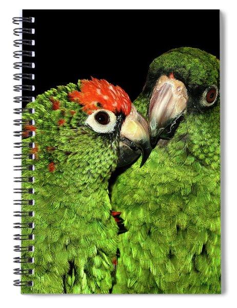Jardine's Parrots Spiral Notebook