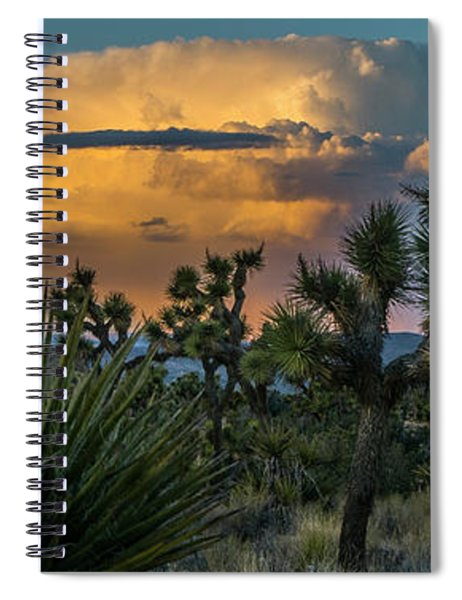 Joshua Tree Thunder Spiral Notebook