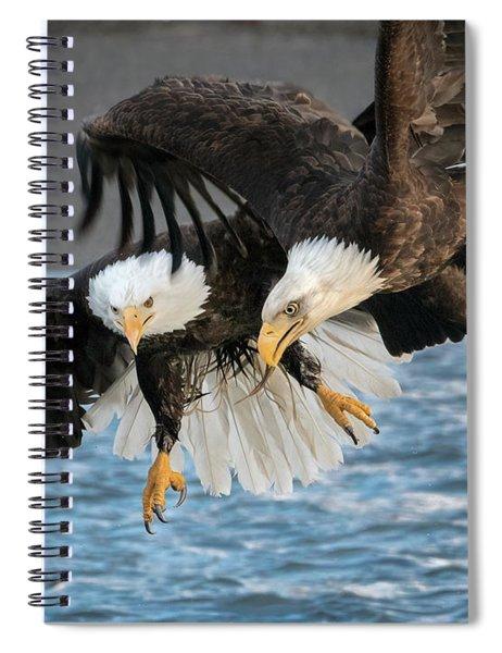 Jousting Eagles Spiral Notebook