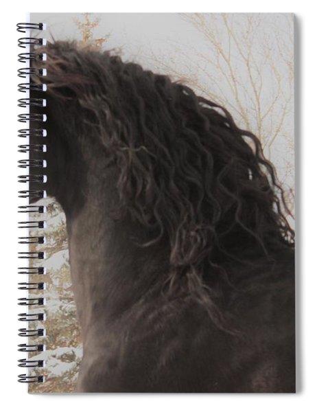 Joy In The Season Spiral Notebook