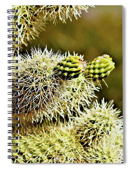 Jumping Cholla Spiral Notebook