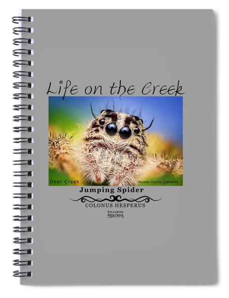 Jumping Spider Colonus Hesperus Spiral Notebook