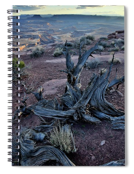 Junipers On Rim Overlooking Green River Spiral Notebook