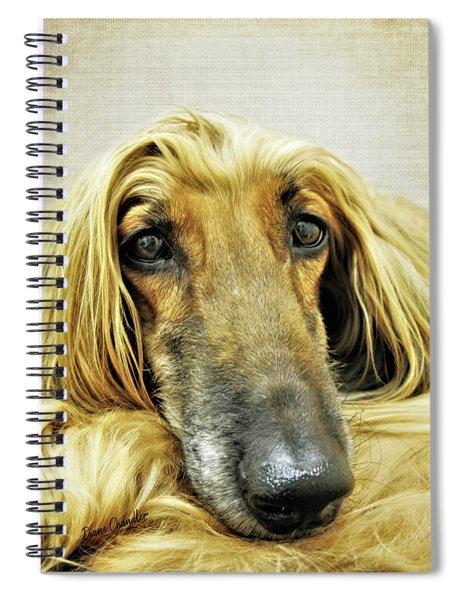 Juno Spiral Notebook
