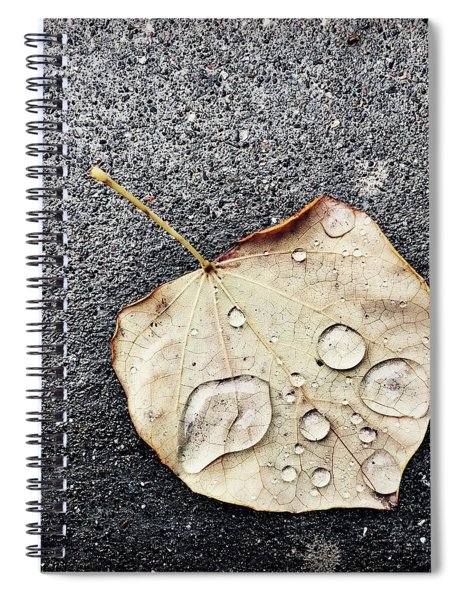 Just A Glimpse Of Autumn Spiral Notebook