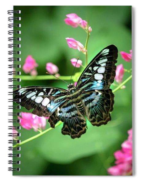 Just Resting  Spiral Notebook