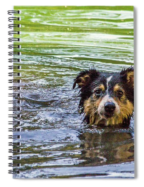 Just Swimming Spiral Notebook