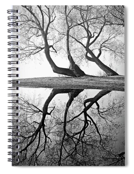 Kaloya Pond And Willow Trees Spiral Notebook