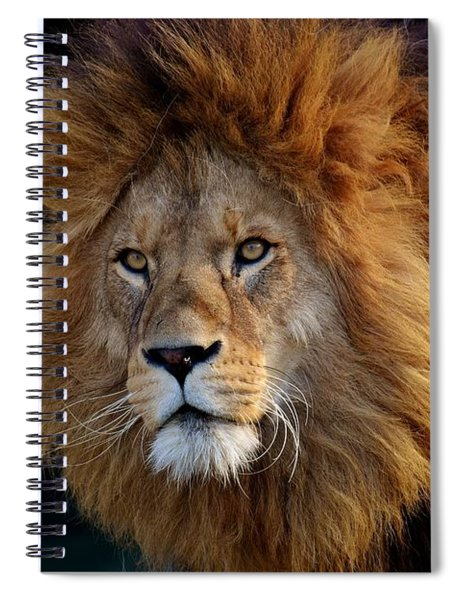 King Lion Spiral Notebook