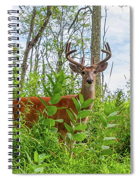 King Of The Mountain Spiral Notebook