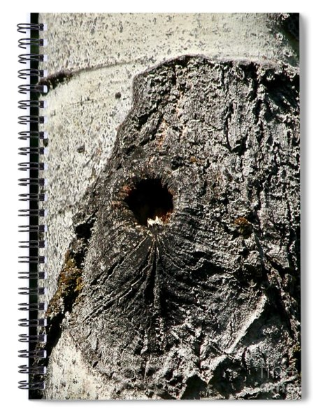 Knot Hole Nest Spiral Notebook