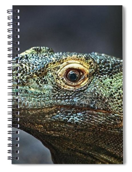 Komodo Dragon Spiral Notebook