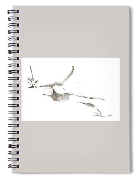 Kroki 2014 03 22 F11 Spiral Notebook