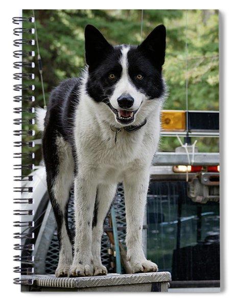 Kuma Spiral Notebook