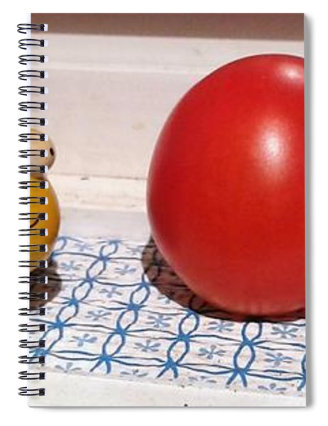 Lady Bug And Friends Spiral Notebook
