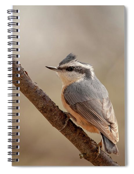 Lady Red-breasted Nuthatch Spiral Notebook