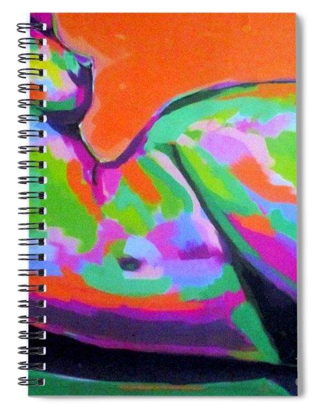 Landscape Of A Body Spiral Notebook