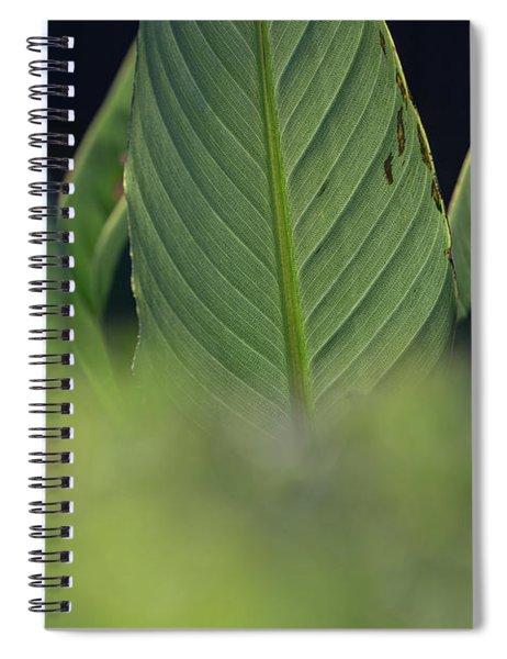 Large Dark Green Leaves Spiral Notebook