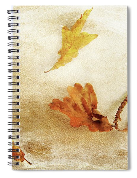 Last Days Of Fall Spiral Notebook