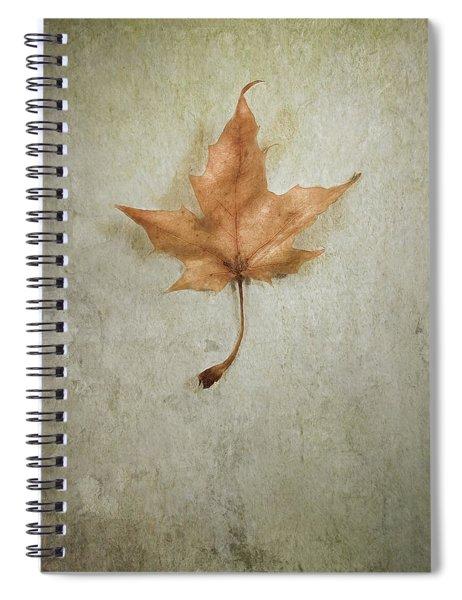 Last Days Spiral Notebook
