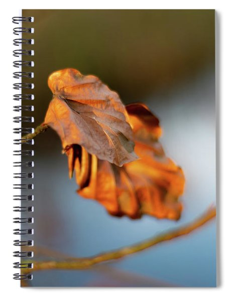 Last Leaves Of Autumn Spiral Notebook by Scott Lyons