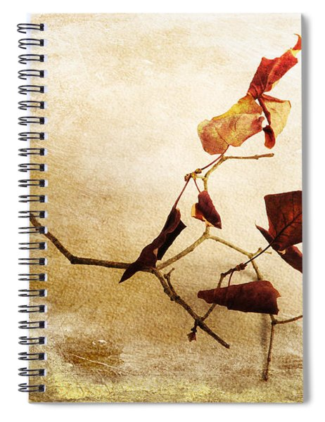 Last Movement Spiral Notebook