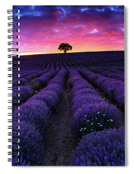 Lavender Dreams Spiral Notebook