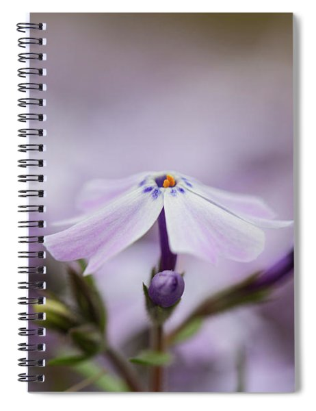 Spiral Notebook featuring the photograph Lavender Reverie by Emily Johnson