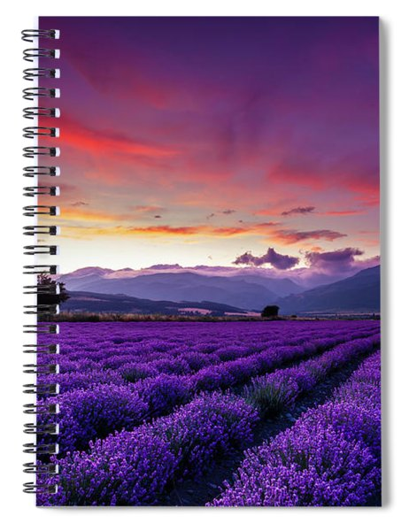 Lavender Season Spiral Notebook