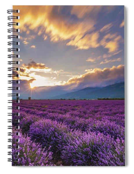 Lavender Sun Spiral Notebook