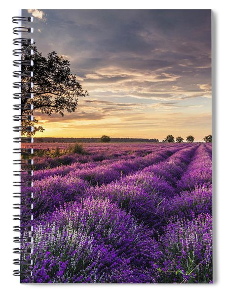 Lavender Sunrise Spiral Notebook