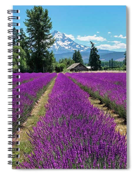 Spiral Notebook featuring the photograph Lavender Valley Farm by Robert Bellomy