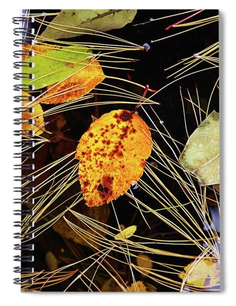 Leaf In Pond Spiral Notebook