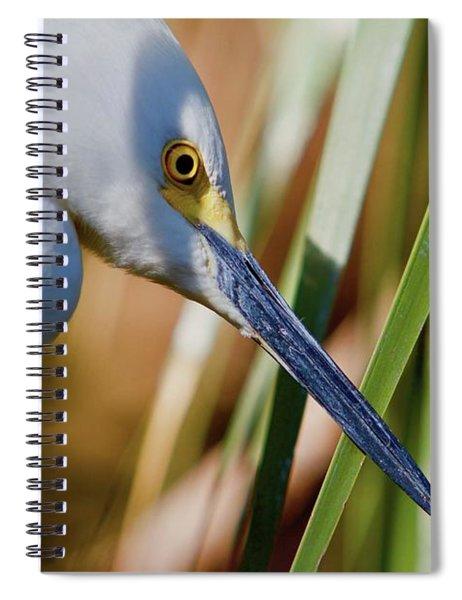 Leaf Shadow Spiral Notebook