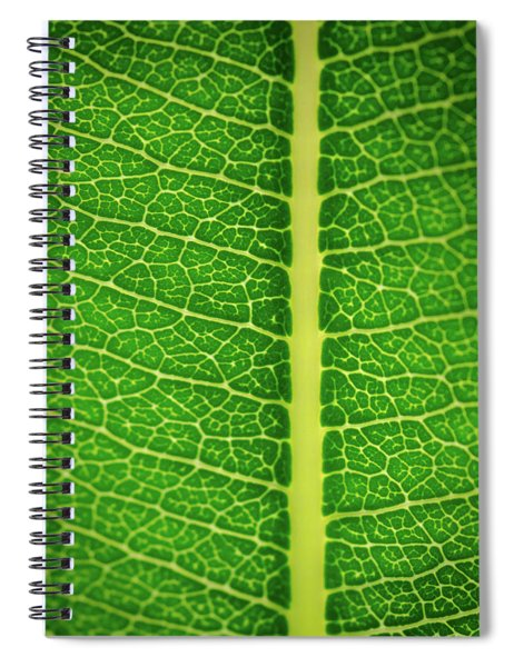 Leafy Detail Spiral Notebook