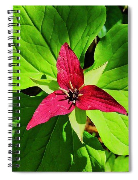 Leafy Red Trillium Spiral Notebook