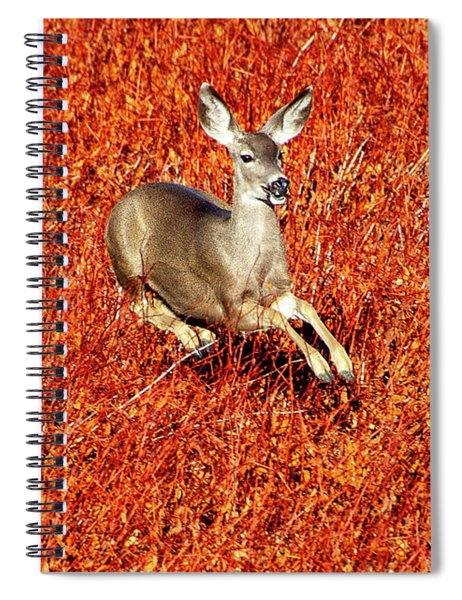 Leaping Deer Spiral Notebook