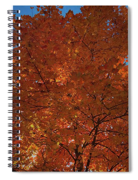 Leaves Of Fire Spiral Notebook