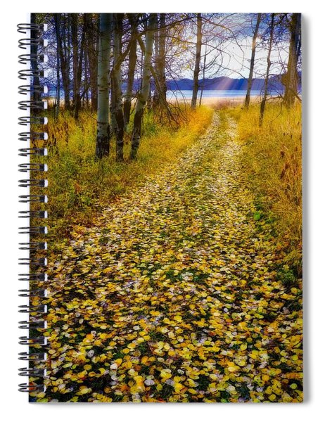 Leaves On Trail Spiral Notebook