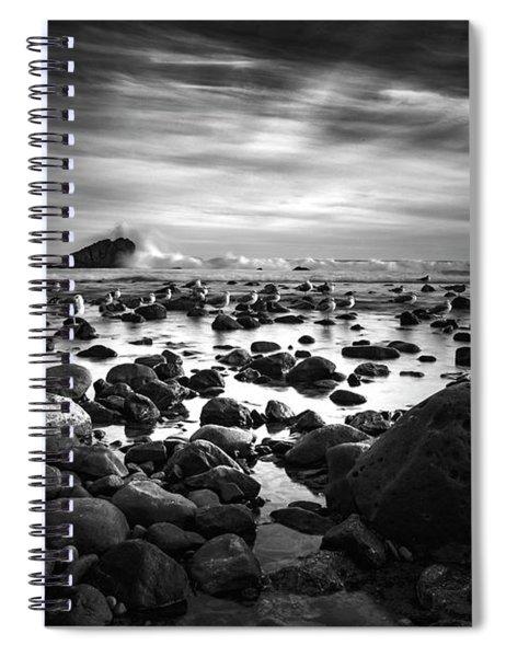 Leo Carrillo Light Spiral Notebook