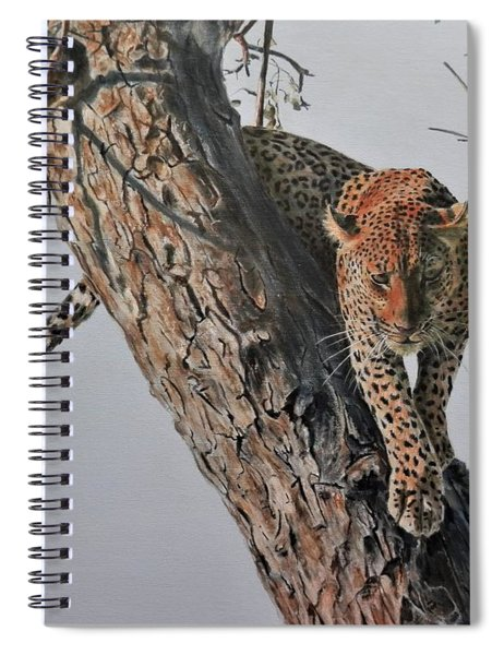 Leopard In Tree Spiral Notebook