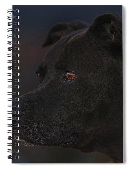Leroy Spiral Notebook