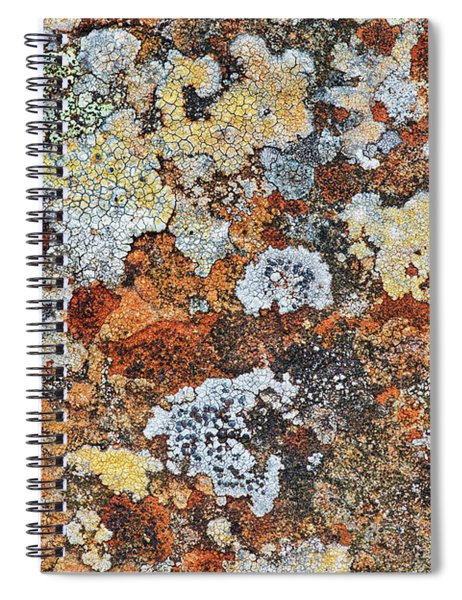 Lichen On Rock Spiral Notebook