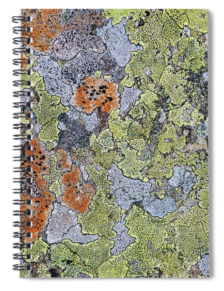 Lichen On Stone Spiral Notebook