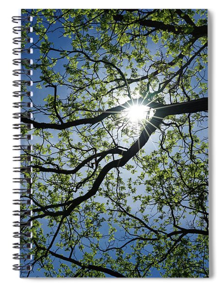 Life Begins Anew Spiral Notebook