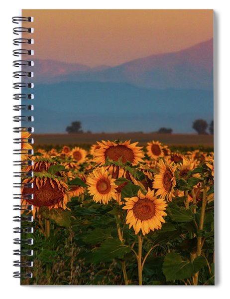 Spiral Notebook featuring the photograph Light Of The Sunflowers by John De Bord