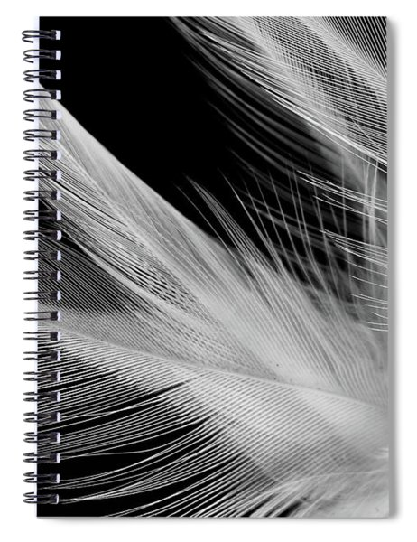 Lightness Spiral Notebook