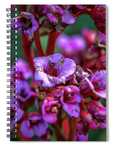 Lilac #h9 Spiral Notebook